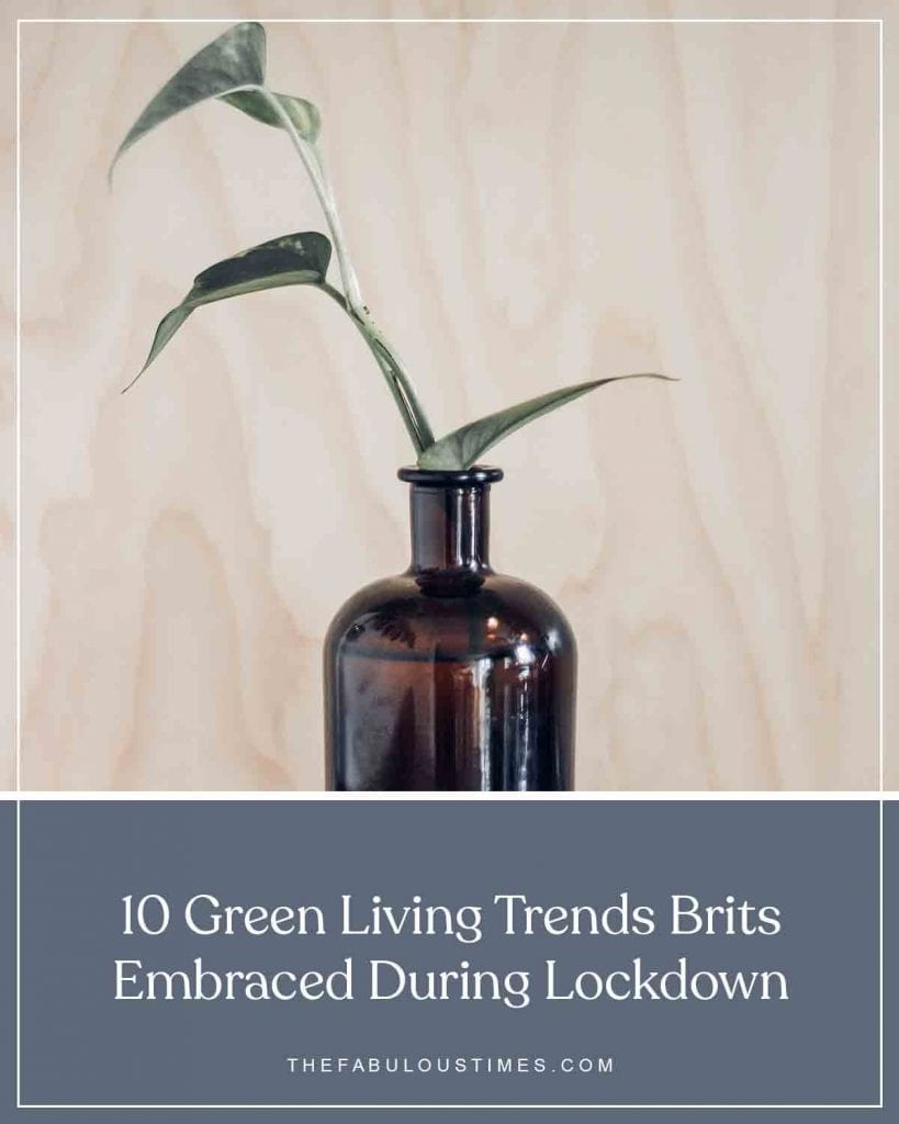 10 Green Living Trends Brits Embraced During Lockdown
